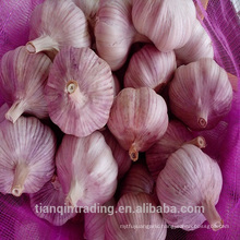 fresh red purple white wholesale china garlic price 2017 per ton