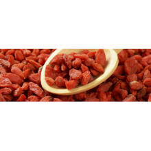 2018 slimming diet goji berry