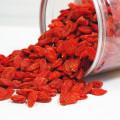 Baie de goji rouge de haute qualité