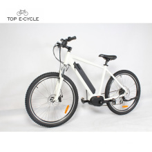 Import high speed Bafang MAX drive Electric Bike from China/e cycle electric bike