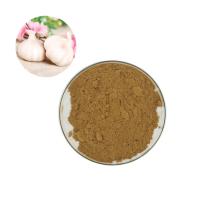 High Quality Best Price Organic Garlic Extract Powder Allicin Powder