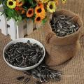Graines de tournesol comestibles de Mongolie intérieure