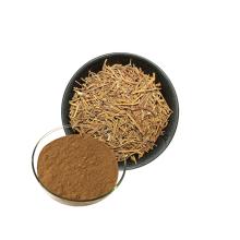 Polvo de extracto de ginseng siberiano natural del producto de la salud