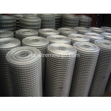 "1/2 ""Wire Mesh Dilas"