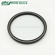 Gas Sealing Piston Rod Spring Energized PTFE Lip Seal