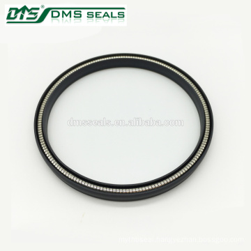 Spring Energized Piston Seal for Dynamic Applications