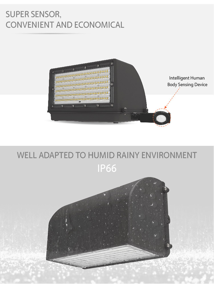 Wall Pack Light 60W