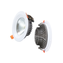 Ceiling LED downlight for home lighting
