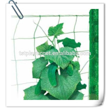 green plant support net manufacturer for bean , cucumber ,tomato
