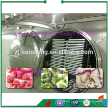 industrial vacuum freeze dryer