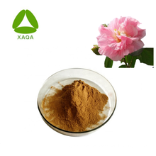 Althea Flower Hibiscus Extract Powder