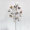 L75cm Decoración preservada natural de la flor Decoraciones artificiales de la Navidad de la flor
