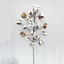 L75cm Natural Preserved Flower Decoration Artificial Flower Christmas Decorations