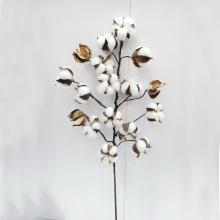 L75cm Décoration de fleurs préservées naturelles Décorations de fleurs en fleurs artificielles