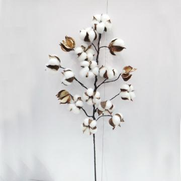 L75cm Естественное сохранение цветов Украшение Искусственный цветок Новогодние украшения