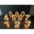 Holiday Decoration Lights LED for Wall Hanging