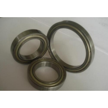 Single Row Deep Groove Ball Bearing (6224)