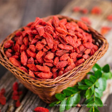 2017 new crop plastic bag packing goji berry for sale