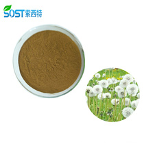 Best Selling Pure Organic Dandelion Root Extract Powder