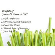 100% reines organisches Citronella-ätherisches Öl
