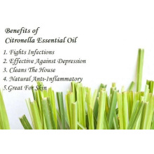 100% чистое органическое эфирное масло цитронеллы