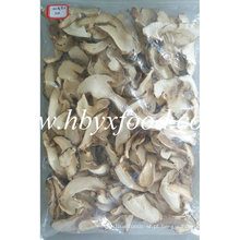Cogumelos De Porcini Secos Congelados De Material Selvagem