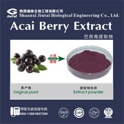 100% water soluble acai berry extract powder