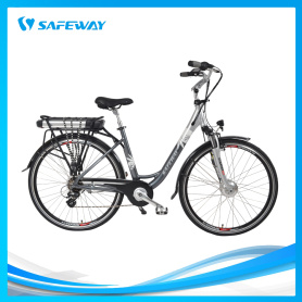 APT 450U LCD display city electric bike