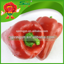 CHINESE FRESH SWEET BELL PEPPER FOR SALE