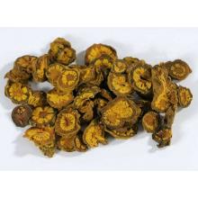 Raw Herbs Radix Coptis