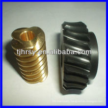 2013 new Worm gears and worm