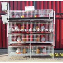 Guangzhou chicken cage for sale, cheaper quail farming/bird cages with good quality