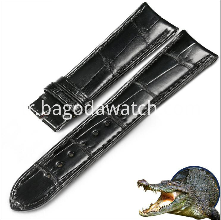 Crocodial Watch Bands