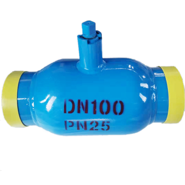 DN100