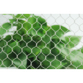 agricultural orchard vineyard anti bird net