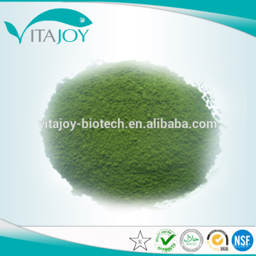 Extracto de hoja de mora de alta pureza Clorofilina de cobre de sodio / estándar de la UE