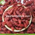 Factory Supply Buy Healthy Nutrition Wolfberries