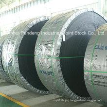 Conveyor System/Rubber Conveyor Belt/Heat-Resistant Conveyor Belt