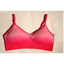 Champion Double Dry Sports Bra with Padded