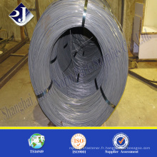 Chine Fournisseur SAE1008 / SAE1008 Carton Steel Wire Rod