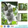 Tejido de polipropileno Spunbond Tejido no tejido que cubre en plátano