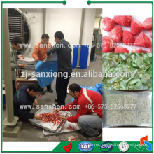 FDG Series Industrial Vacuum Freeze Dryer for Food