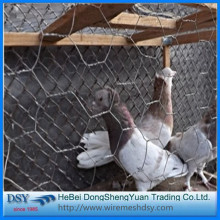 galvanized hexagonal bird mesh fencing