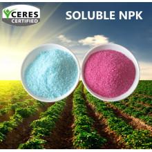 Индивидуальный химически растворимый фетилизатор NPK 19-19-19
