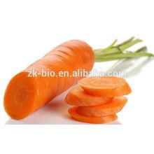 Alta qualidade suco de cenoura em pó