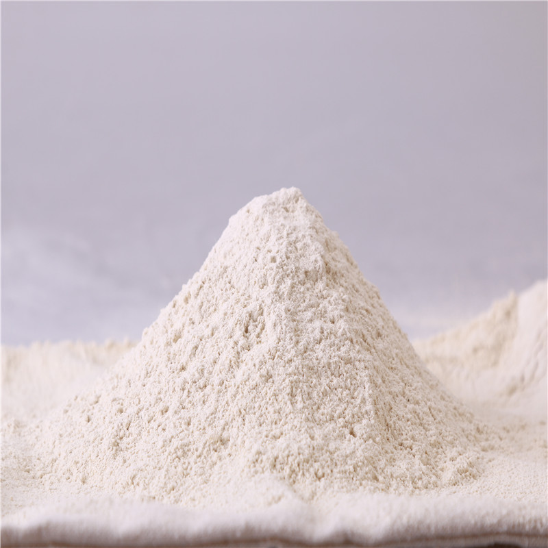 Garlic Powder11
