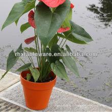 Mini pots de fleurs à la fibre de bambou en plein air
