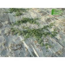 Rolos de filme plástico para biodegradação agrícola