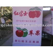 Shandong China Fuji manzana