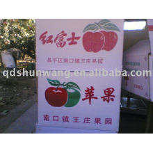 Shandong China Fuji apple